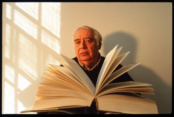 Harold Bloom e o eterno prazer de ler livros. ( Getty Image)